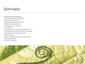 Porte Folio Ismael Hautecoeur_Page_02